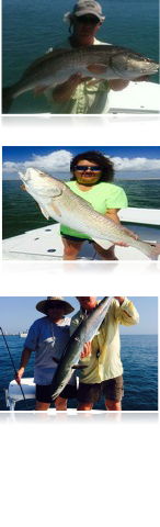 South padre island bay fishing photo gallery for Bay fishing spi